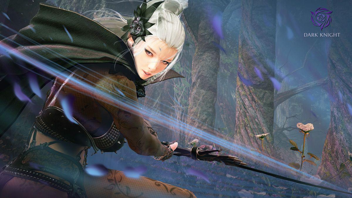Создание Dark Knight доступно на серверах корейской версии Black Desert 16972