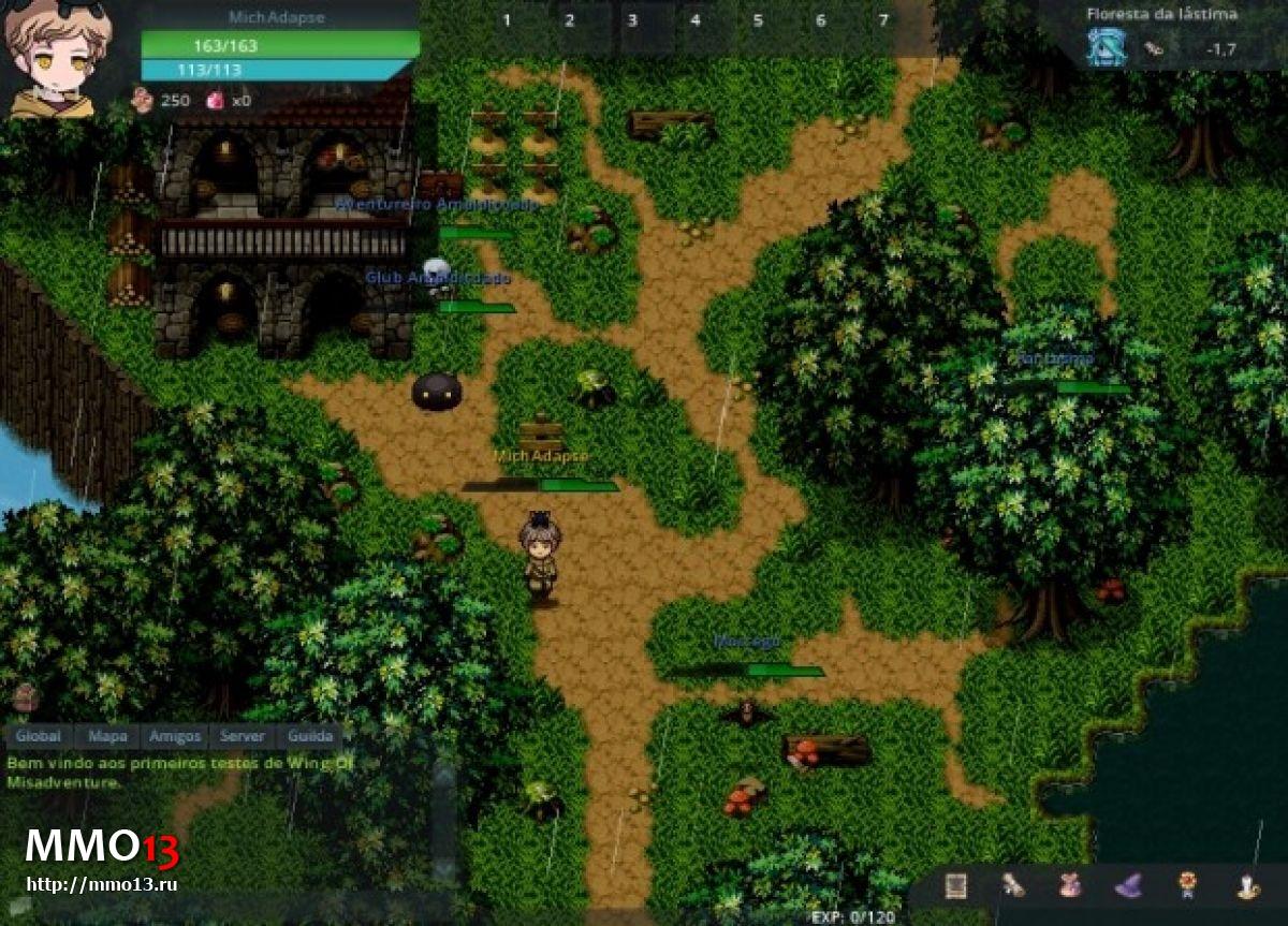 Wing of Misadventure будет первой полноценной MMORPG на RPG