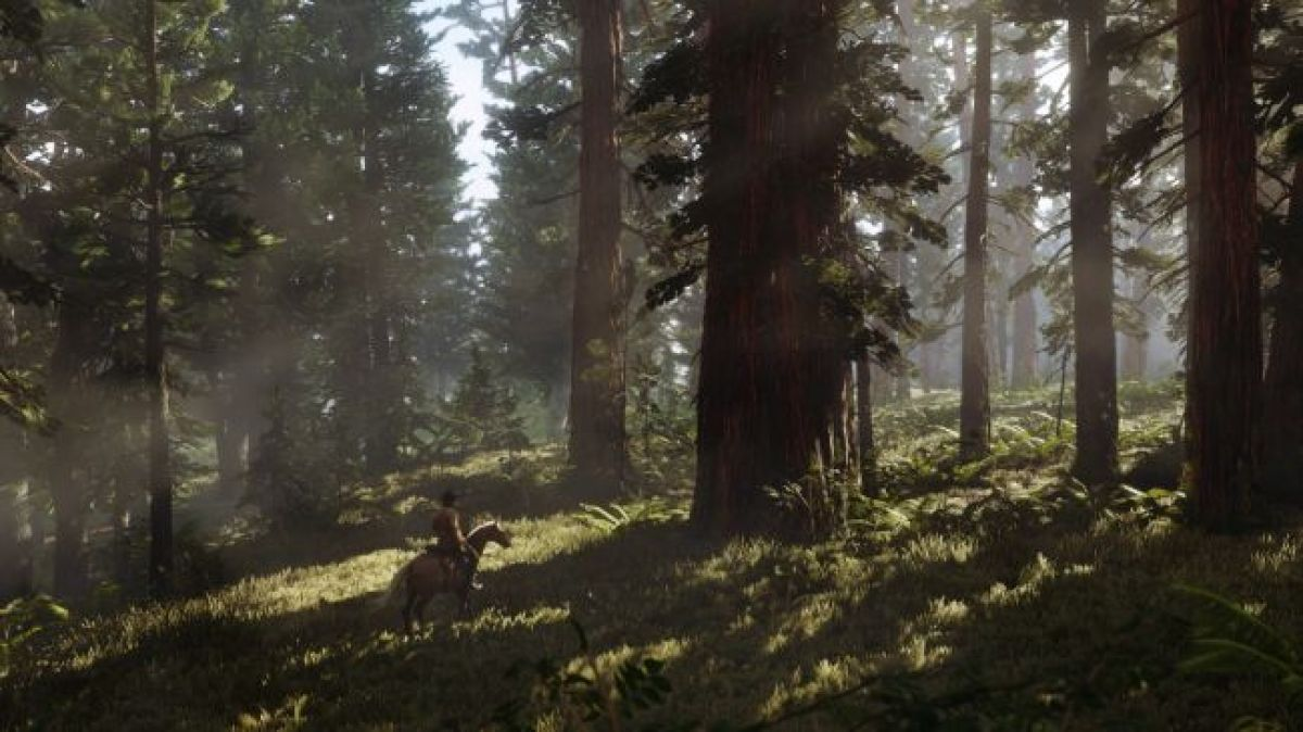 Red Dead Redemption 2 отложена до 2018 года 19610