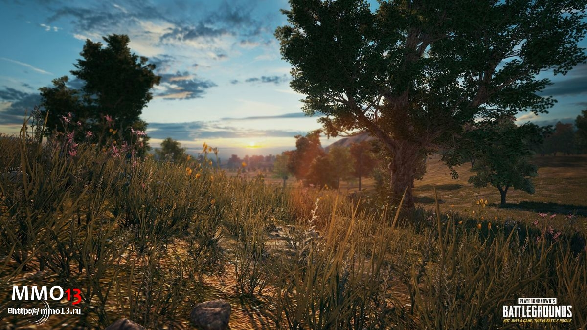 Интервью с создателем Playerunknown`s Battlegrounds, часть 1: успех игры, Xbox One, Марио и читеры 21871