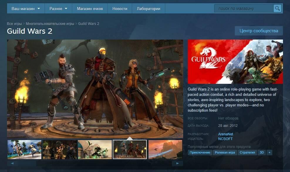 Guild Wars 2 выйдет в Steam