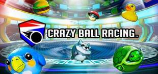 Crazy Ball Racing™