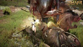 Black Desert - Разработчики официально представили нового персонажа Tamer