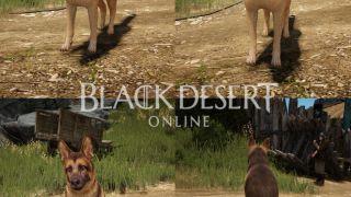Black Desert Online EU/NA - Информация о первом европейском ЗБТ