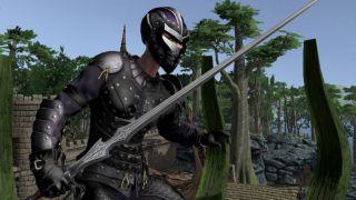 Скриншот или фото к игре Shroud of the Avatar из публикации: Разработчики Shroud of the Avatar рассказали о штрафе за смерть