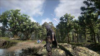Скриншот или фото к игре Dark and Light из публикации: Подробности экипировки в Dark and Light