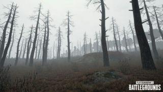 Скриншот или фото к игре Playerunknown`s Battlegrounds из публикации: Подробности обновления для PlayerUnknown's Battlegrounds и тизер тумана