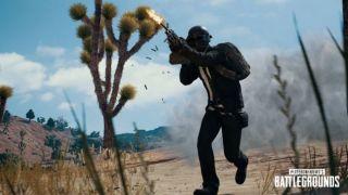 Скриншот или фото к игре Playerunknown`s Battlegrounds из публикации: Штурмовые винтовки в PUBG понерфят