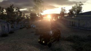 Sunrise: survival