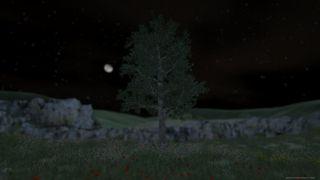 Tree Simulator 2020