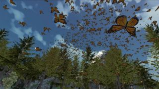 Dances with Butterflies VR