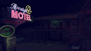 The Moonlight Motel
