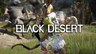 Black Desert - Демонстрация экипировки и монстров