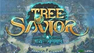 Tree of Savior - Корейское ОБТ в декабре!