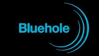Студия Bluehole формирует команду для работы в VR направлении