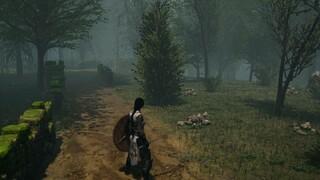 MMORPG Past Fate обзавелась новым трейлером в честь скорого выхода на Kickstarter