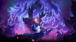 Ori and the Will of the Wisps на Xbox Series X будет поддерживать 120 FPS, 4K и улучшенный звук