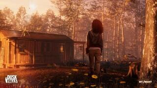 Бывшие сотрудники Quantic Dream выпустят сюжетную игру As Dusk Falls