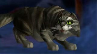 WoW игроки спустя год разгадали загадку с котом из пустоты