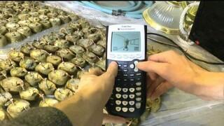 Игрок запустил DOOM на калькуляторе, работающем от обыкновенной картошки