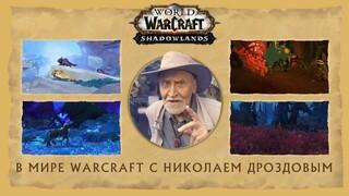 Николай Дроздов поведал о разнообразии фауны в World Of Warcraft Shadowlands