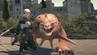 MMORPG Legends of Gondwana предложит все, что вы знаете и любите в жанре