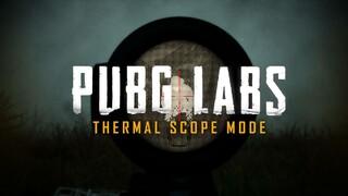 Прицелы ночного видения экспериментально добавили в PUBG