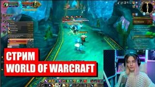 Стрим World of Warcraft  Мы вернулись!