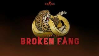 Режим Broken Fang Premier в CS GO теперь доступен всем игрокам