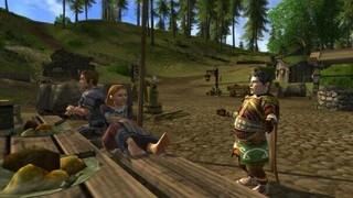 Игрок MMORPG The Lord of the Rings Online достиг максимального уровня выпекая торты 8 месяцев