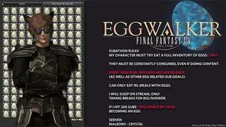 Игрок Final Fantasy XIV съел 147000 яиц за 7 дней без перерыва