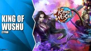 Знакомство с 3D MOBA King of Wushu от Snail Games на китайском ОБТ