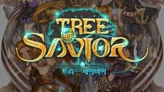 Новая информация от разработчиков Tree of Savior