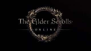 В The Elder Scrolls Online может появиться остров TES III: Morrowind