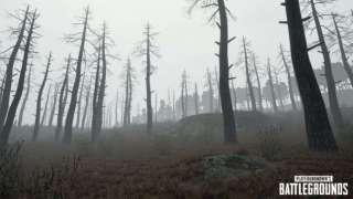 Подробности обновления для PlayerUnknown's Battlegrounds и тизер тумана