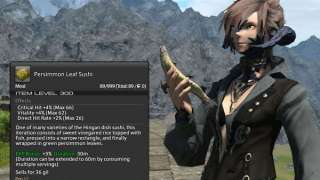 Обзор нового интерфейса в Final Fantasy XIV